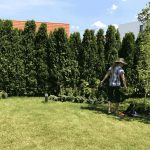 Ландшафтен дизайн и поддържане на градина